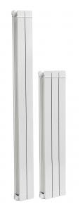 poza Radiatoare din aluminiu FERROLI TAL1000x3 elementi